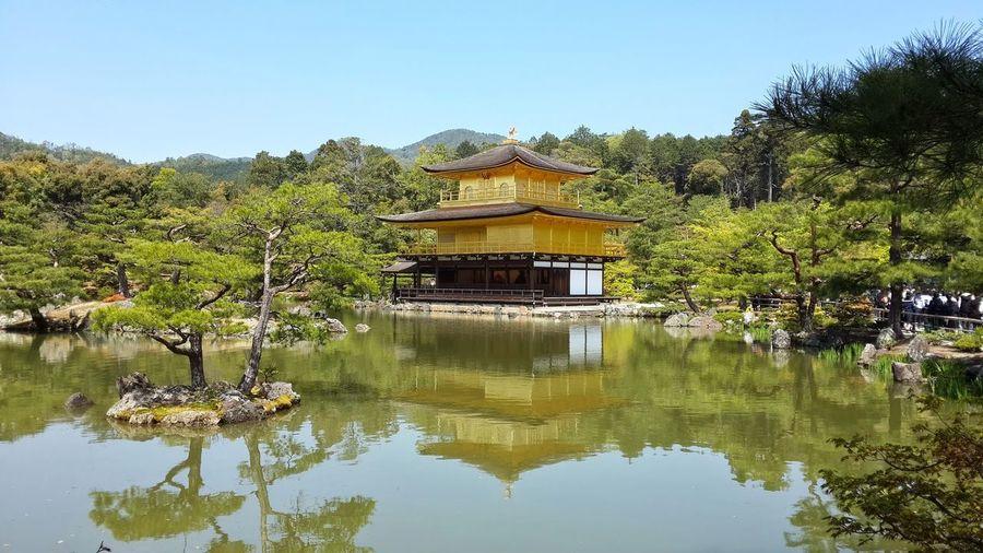 Golden Pavilion, Kyoto, Japan ASIA Golden Temple Japan Japanese Garden Kinkaku-ji Kinkaku-ji Golden Pavilion Rokuon-ji Golden Pavilion  Kyoto Outdoors