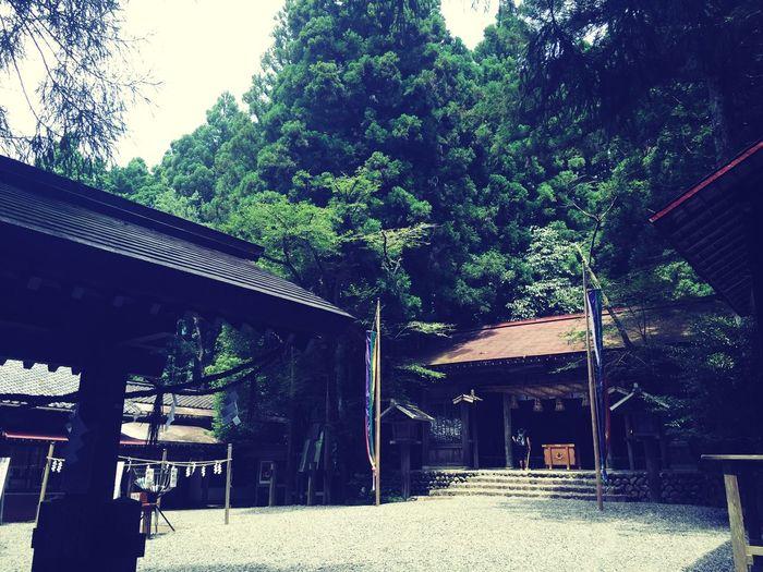 Shrine Japan Japanese Culture 秋葉神社