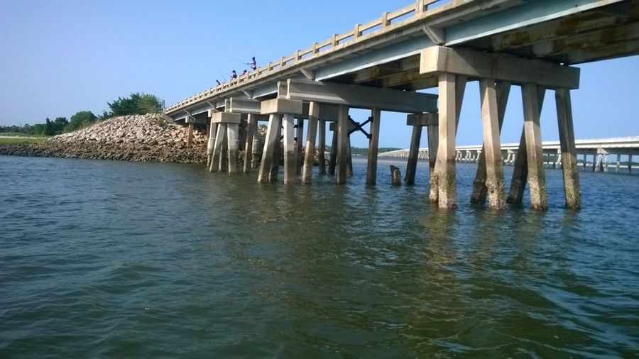 Saltwater Home Architecture Fishing Life Scenic Atlantic Outdoors Peaceful Abstract Raw Photography Amature Photography Vibrant Floridaphotographer Tropical Bridges, Highway, Freeway, Structure, Arches, Concrete, Access, Pedestrian, Vehicle, Cabrillo Bridge, Balboa Park, San Diego, California, Trees, Landscape, Tower, Railings, Scenic, Seismic, Sunshine Textured  Water Salt bridge Check This Out