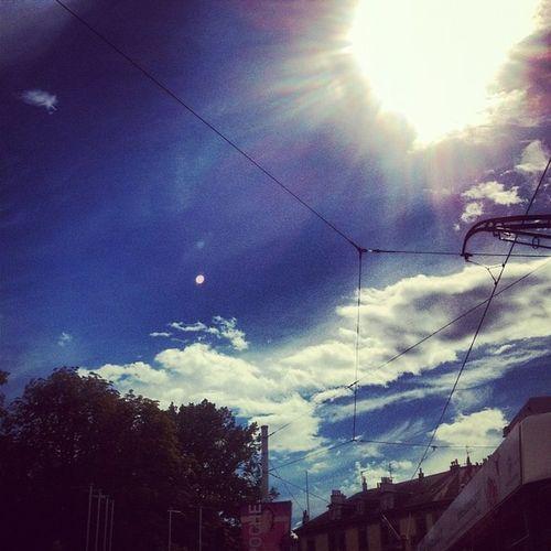 Sun's back