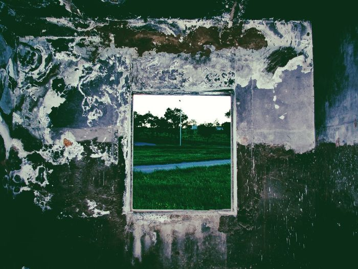 Window Grass Built Structure Day Building Exterior Outdoors Architecture No People Tree Soccer Field Sky Polaroid Art