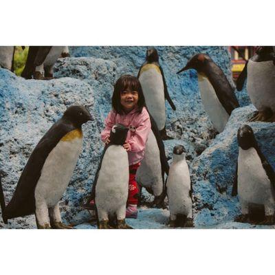 Miskah Daughter Play Zoo pinguin fun