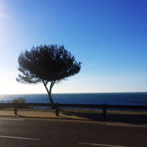 Sausset Les Pins Sea And Sky