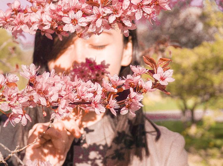 spring Sakura Springtime Spring Sakura Blossom Cherry Blossoms Flowers Tree Flower Blossom Nature Springtime Beauty In Nature Adult Beauty Young Adult Branch One Person Sunlight One Woman Only Human Body Part