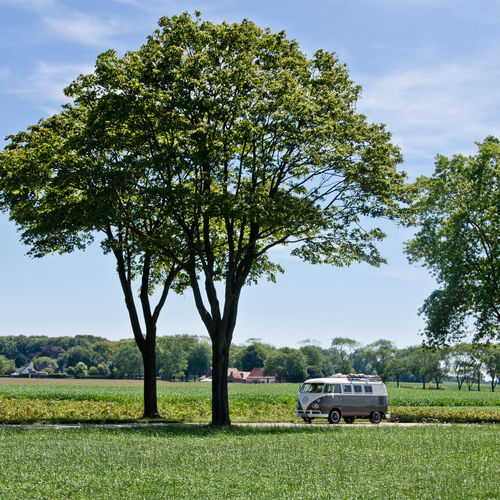 Belgium Flanders Split SplitScreen Splitty Summer Summer Fields Summertime Sun T2 Volkswagen Volkswagenbus VW