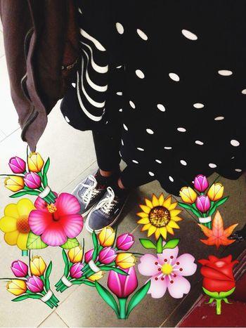 Flowers 🌸🌞