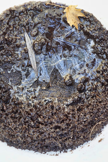 High angle view of ice on dirt over white background
