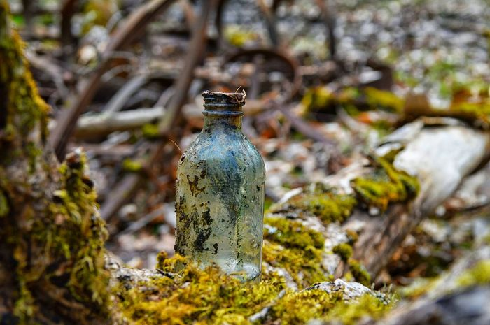 Bottle Old Bottle Moss