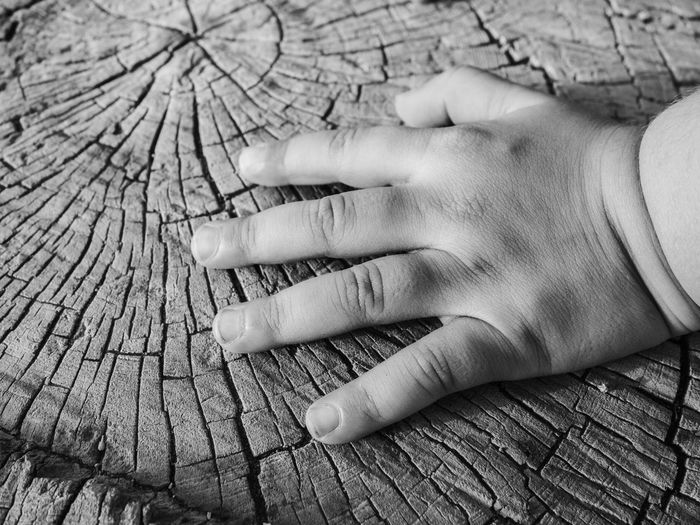 Blackandwhite Childhood Close-up Day Human Body Part Human Hand Monochrome One Person Outdoors Real People Weathered Weathered Wood Wood