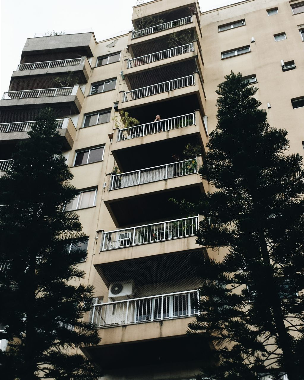 architecture, growth, window, tree, city, modern, building exterior, apartment, skyscraper, no people, residential, day