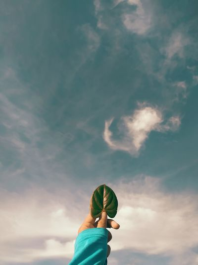 Low angle view of person holding a leaf against sky