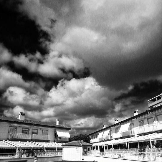 Otoño gris en Elche Enfocae Blackandwhite Shootermag