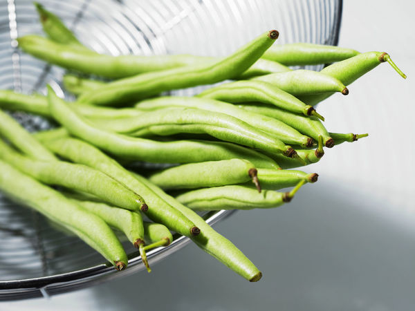 french bean in wire basket Container Food And Drink French Bean Freshness Green Green Beans Green Color Raw Close-up Food Fresh Healthy Eating High Angle View Indoors  Ingredient No People Selective Focus Still Life Studio Shot Vegetable Wellbeing White Background Wire Basket
