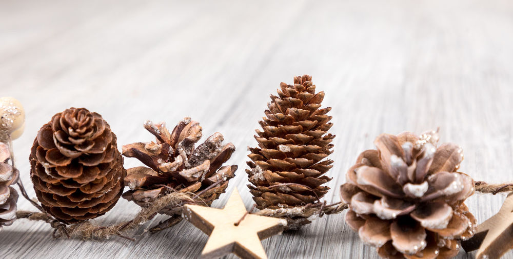 Celebration Christmas Close-up Coniferous Tree Cookie Decoration Focus On Foreground Freshness Holiday Indoors  No People Pine Cone Shape Star Shape Still Life Sweet Food Table Wood - Material