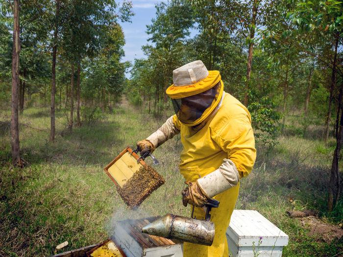 Beekeeper working in farm