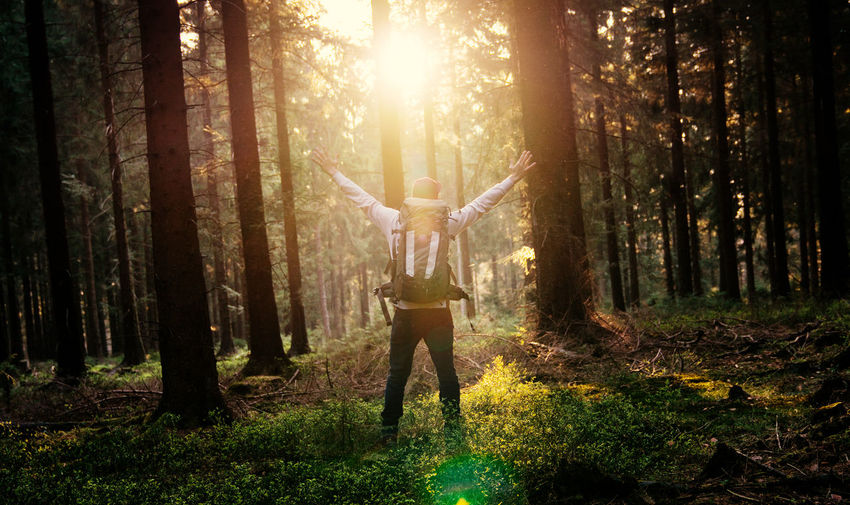 Backlit Dawn Dusk Exploring Forest Forest Photography Forrest Hiking Instagood Lens Flare Light Light And Shadow Love Man Nature Naturelovers Outdoors Power In Nature Scenics Sun Sunset Sunshine Trees Walking Wanderlust