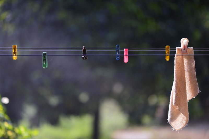 Hanging Clothesline Clothespin Arrow - Bow And Arrow Target Shooting Shooting A Weapon Hunting Ear Protectors Rifle Aiming Hunter Warrior - Person Archery Bullet Coathanger Sports Target Laundry Bubble Wand Woolen Hook Gun Handgun Self-defense Wool