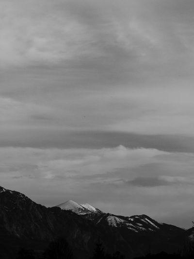 Schwarzweiß Blackandwhite Wälder Wald Bwpic Bw BWpics Naturfotos Blackandwhitephotography Schwarzweißfotografie Forest Spaziergang Forests Bäume Forestphotography Waldfotografie Germanroamers Weroamgermany Wandern Nature_collection Bw_ Collection BW_photography Bw_collection Bird Photography Natur Nature Naturelovers Nature Photography Mountain Sky Snowcapped Snowfall Snow Covered