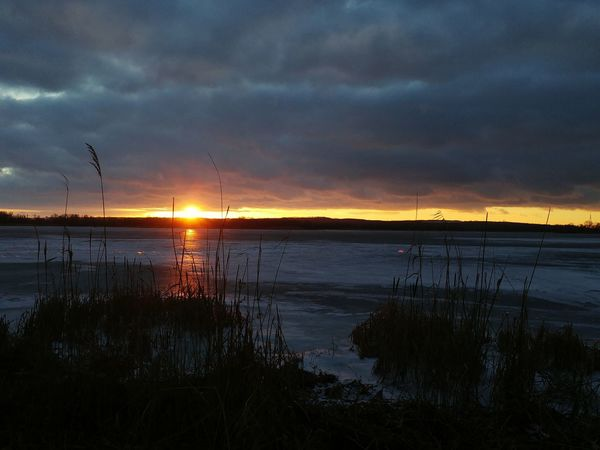 Sunset Nature Outdoors Landscape Grass Tree Sky Beauty In Nature Scenics Extreme Weather River Riverside Frozen Ice Wintertime Winter Winterscapes Sunset_collection Sundown Snow Beatiful Nature Evening Light Clouds Light Clouds And Sky
