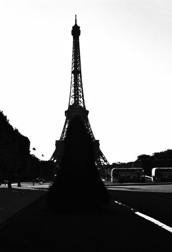Eiffel Tower, trying to hide behind a conical Taxus tree, but upper part still visible (1990) 1990 Analogue Photography Architecture Black And White Built Structure Busses City Cultures Day Eiffel Tower History Landmark Tower No People Outdoors Scans Sky Taxus Tower Travel Travel Destinations Tree