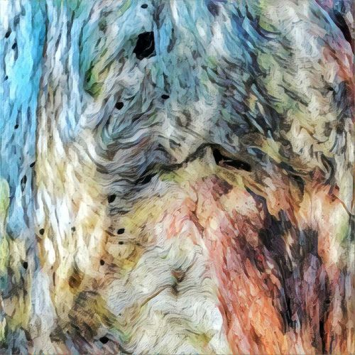 Bark Abstract. Full Frame Backgrounds Close-up No People Textured  Indoors  Day Fresh On Eyeem