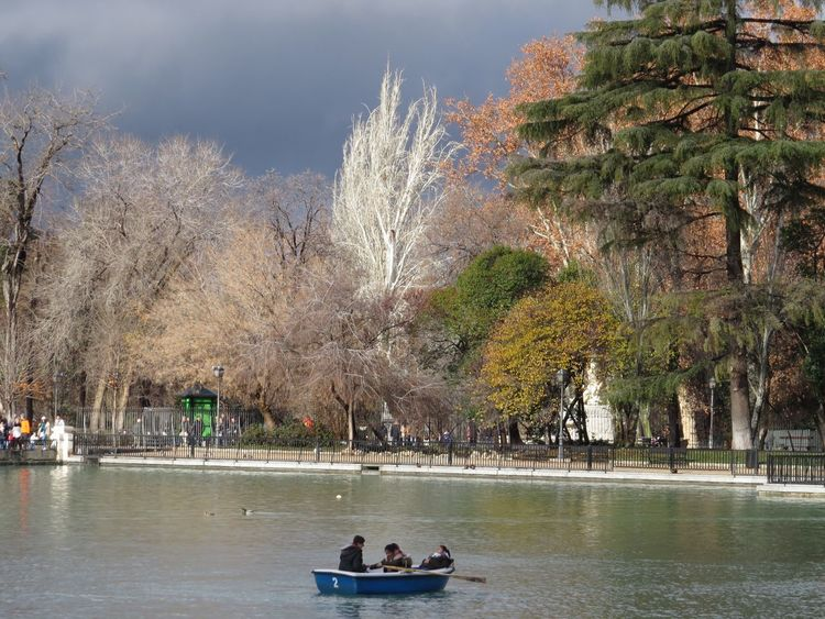 Boat Lake Lakeshore Leisure Time Outdoors Park Rowing Rowingboat Tranquil Scene Treescape Water White Tree Trunk