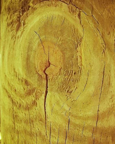 Yellow Wood Woodenpost Stained Wooden_hue_solidsquare Wooden_hue_liketoknow Grain Texture 9Vaga_ColorYellow9 Wooden_hue Wooden_hue_yg Ig_4every1_yellow
