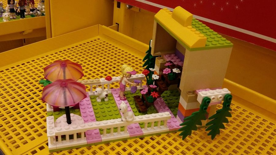 LEGO Family Time Quality Time Fun Play Big Boys Toys Flower Shop