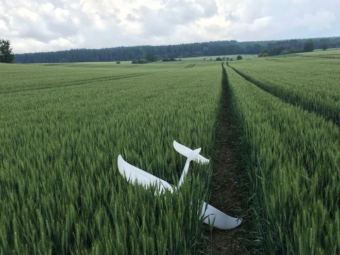 Scenic view of fallen model airplane in field