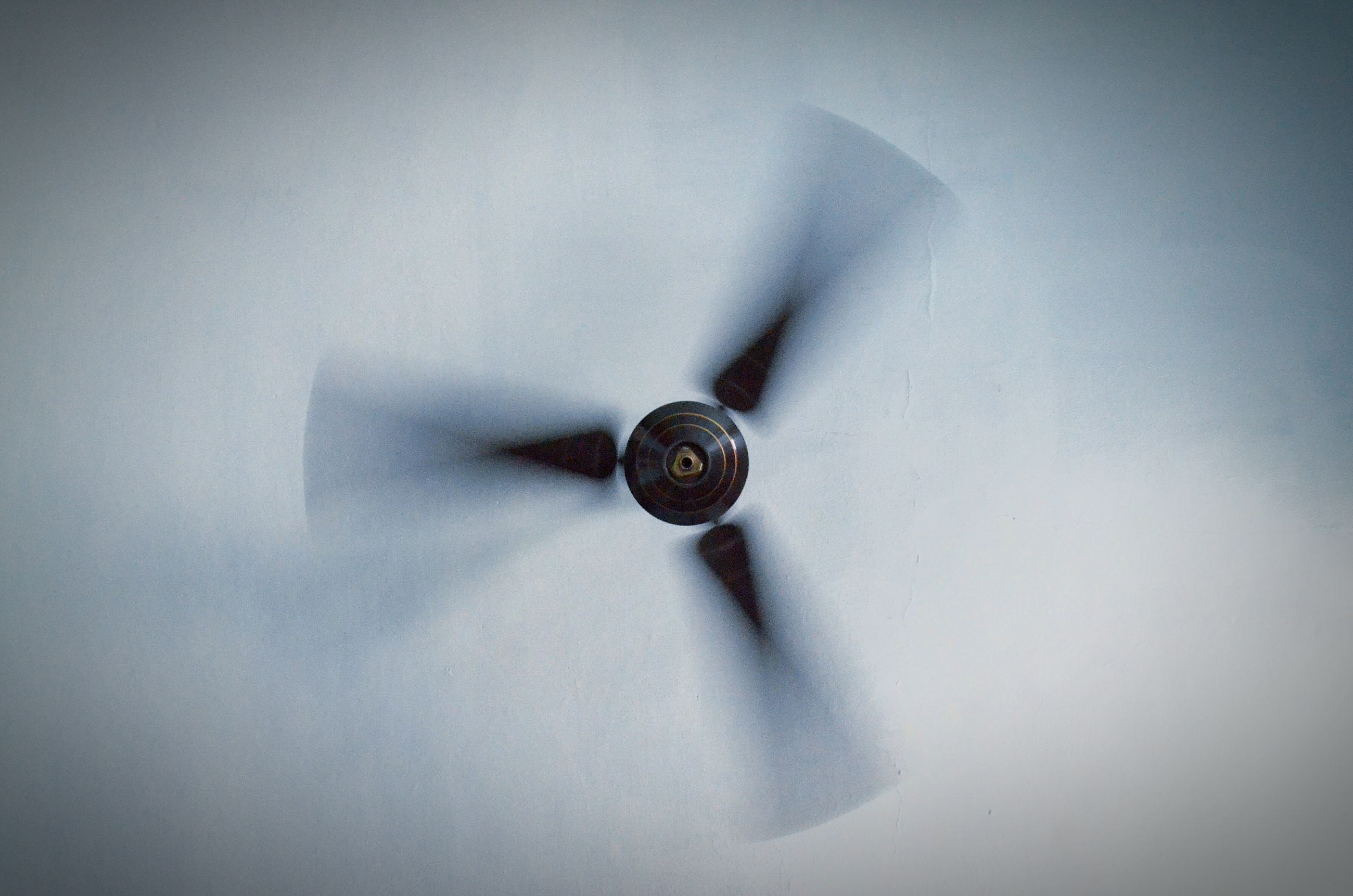 ceiling fan, electricity, electric fan, fan, ceiling, home interior, indoors, white color, technology, motion, blurred motion, low angle view, no people, close-up, day
