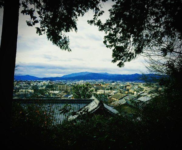 猫が可愛い金福寺から鷹峯方向 金福寺 京都 一乗寺 寺社仏閣 Kyoto Relaxing