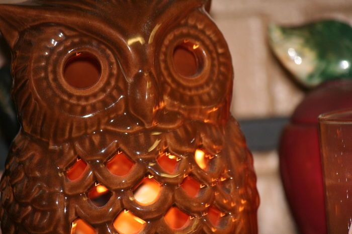 Candle Close-up Day Indoors  Lit Candle No People Owl Owl Art Always Be Cozy
