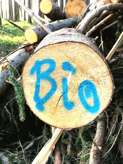 Bio Holz Wood Bio Sign Plant Shape
