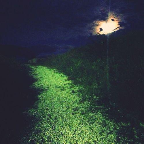 Fantasy is a part of reality, Klisura,BG