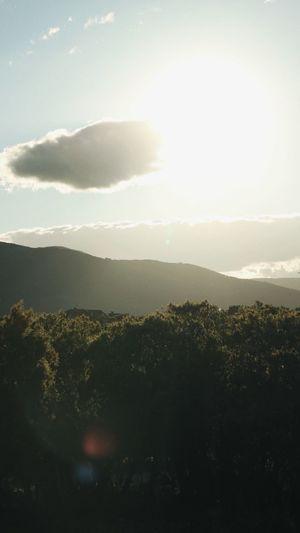 Views Mountain