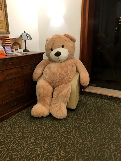 Teddy Toy
