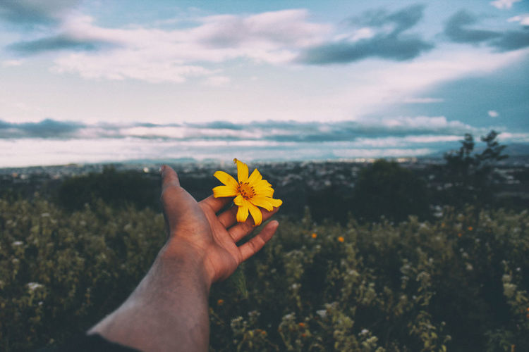 drifting away Beauty In Nature Cloud Cloud - Sky Day Flower Flower Head Human Hand Landscape Mountains Nature Nature One Person Outdoors People Real People Sky Tree Yellow