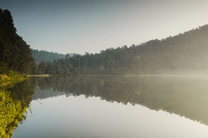 Reflection in situ gunung Ambiance Beauty In Nature Clear Sky Copy Space Day Forest Idyllic Lake Lake View Nature No People Non-urban Scene Outdoors Plant Reflection Reflection Lake Scenics - Nature Sky Sunrise Symmetry Tranquil Scene Tranquility Tree Water Waterfront