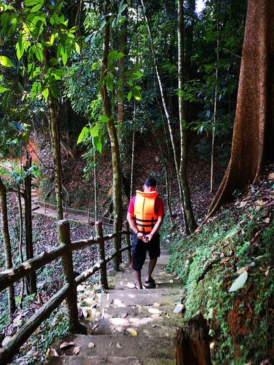 Kenyir Lake Kenyir Lake Resort Malaysia Truly Asia Malaysia Lake View Lake Lakeside Water Waterfall Water_collection Outdoors Outdoor Photography Forest Forest Photography Forestwalk Tree Plant Full Length Real People Rear View Nature Growth Men One Person Leisure Activity Land Day Lifestyles Trunk Tree Trunk Standing Casual Clothing Walking WoodLand