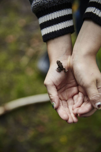 Close-up of person holding hands