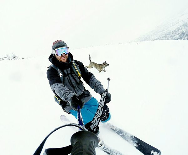 My dog, Nixon, and I are Adventure Club Adventure Buddies Original Experiences Feel The Journey White Expression Fast Backcountry Skiing Happiness Authentic Partner Backcountry Canine Companion Dog Walking Man And Dog Adventure Skiing Skier Canine Dog Good Times With Dog Dogslife Powder Alternative Fitness Snow Sports Pet Portraits Second Acts