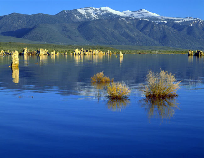 Quiet and fresh natural scenery Natural Scenes Tranquil Lake United States Western America Architecture Beautiful Scenery Beauty In Nature Blue Day Great Lake Lake View Landscape Mountain Mountain Range Nature No People Outdoors Reflection Refreshing Scenics Sky Snow Landscape  Water