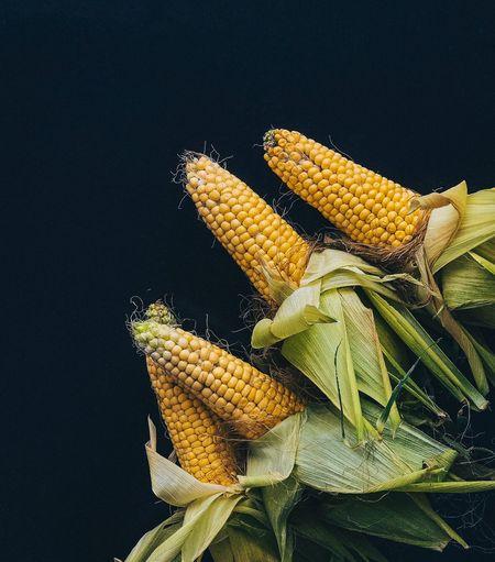 ears of corn on