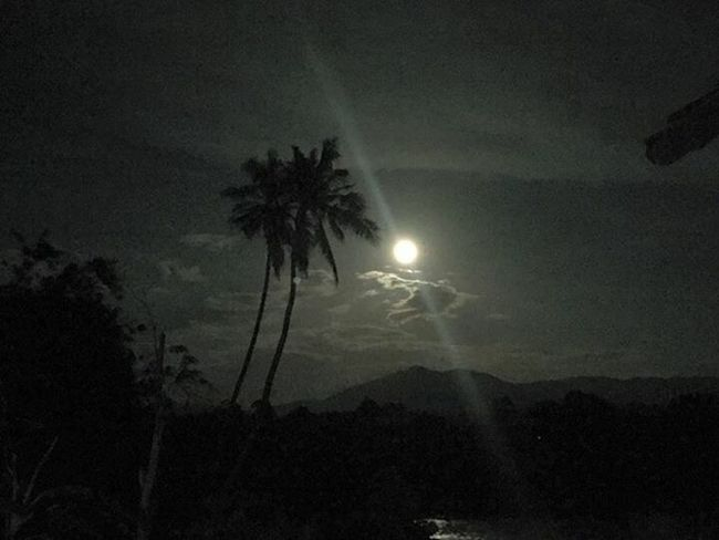 Full Moon by The River