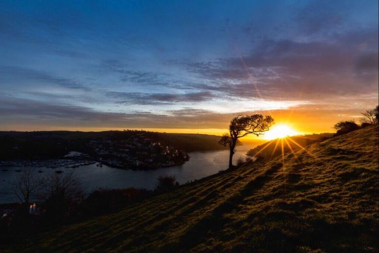 Winter sunrise from Jawbones Hill, Dartmouth. Looking out of the mouth of the River Dart past Dartmouth & Kingswear Castle. Sun Sunrise Dartmouth Dartmouthcastle River Dart Winter Sunshine ☀ Newday Beautiful Nature Tree Kingswear England Devon SouthWestEngland Hill