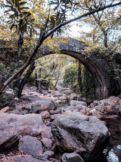 Bridge across the stream Bridge - Man Made Structure Mediterranean  Forest WoodLand Trees SPAIN Andalucía River Riverside Arch Bridge Tree Full Frame Backgrounds Sky Close-up Rugged Eroded Stream Scenics Tranquil Scene Shore Rough Canyon Geology Rock Physical Geography Tranquility Rock - Object