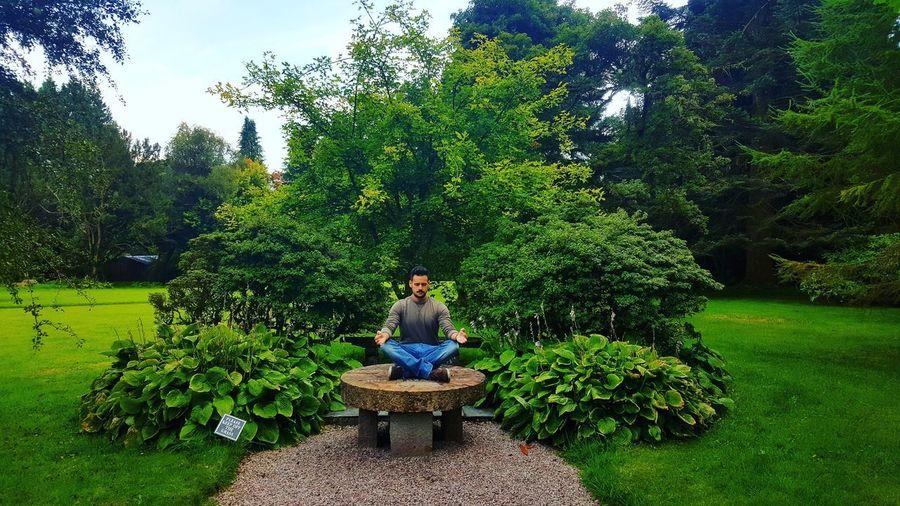 Meditation and