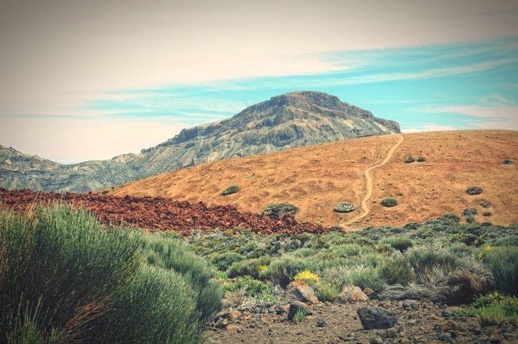 Del teide national park. hiking path leading through vulcanic landscape. tenerife. Canary Islands Tenerife Path Hiking Vulcano Del Teide Teide Just Around The Corner