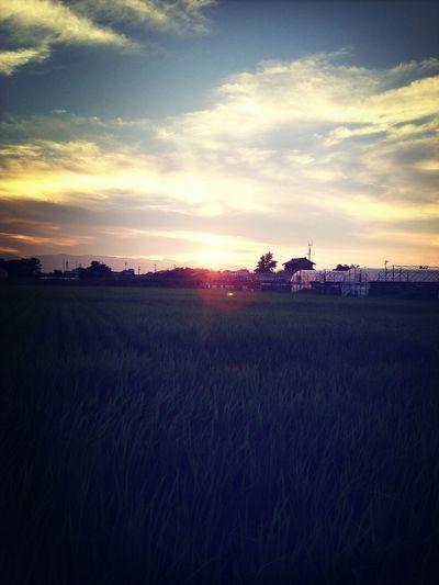 大好きな田舎の風景
