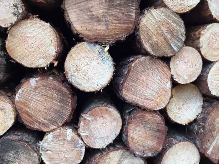 Full Frame Large Group Of Objects Abundance Timber Wood Log Nature No People Tree Textured